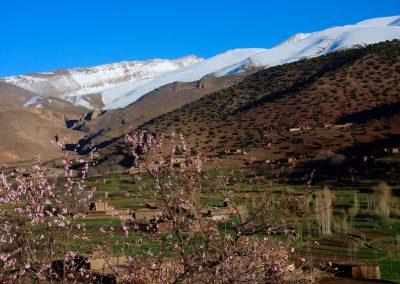 happy valley morocco