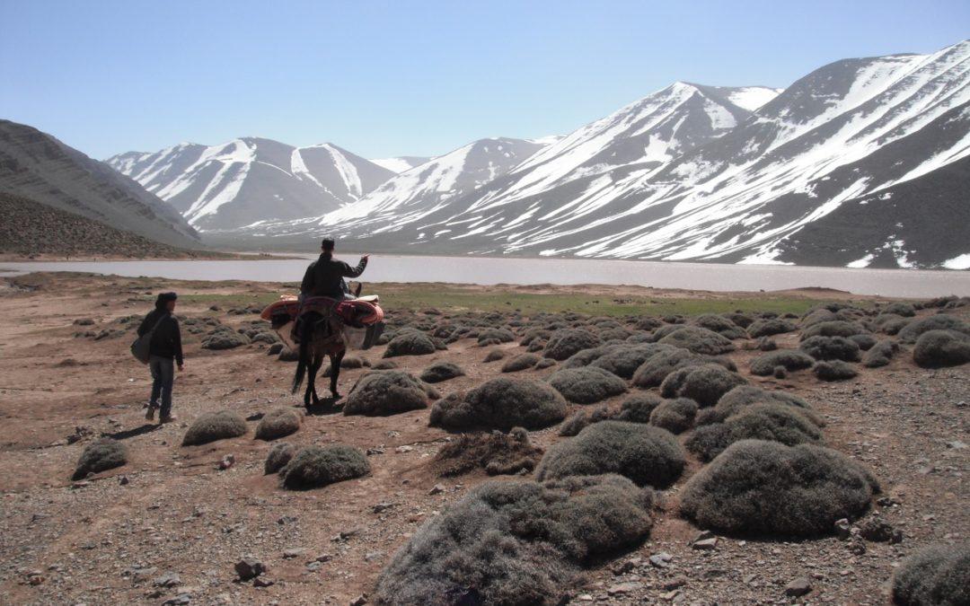 Trekking in Ait Bougmez Valley